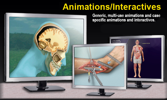 Animations-Interactives